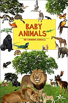 Animals for toddlers: 100 common animals (Early reading books) by [book, Kita]