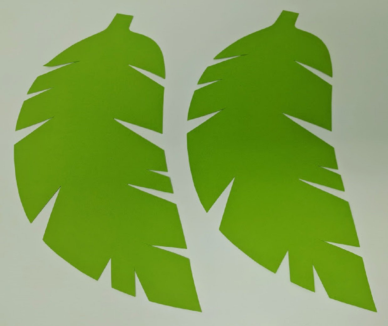 Different Shapes Green Tones 19 Tropical Paper Leaves Perfect for Backdrops