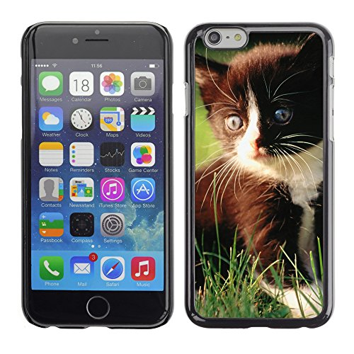 Premio Sottile Slim Cassa Custodia Case Cover Shell // V00003776 chaton romantique // Apple iPhone 6 6S 6G 4.7""