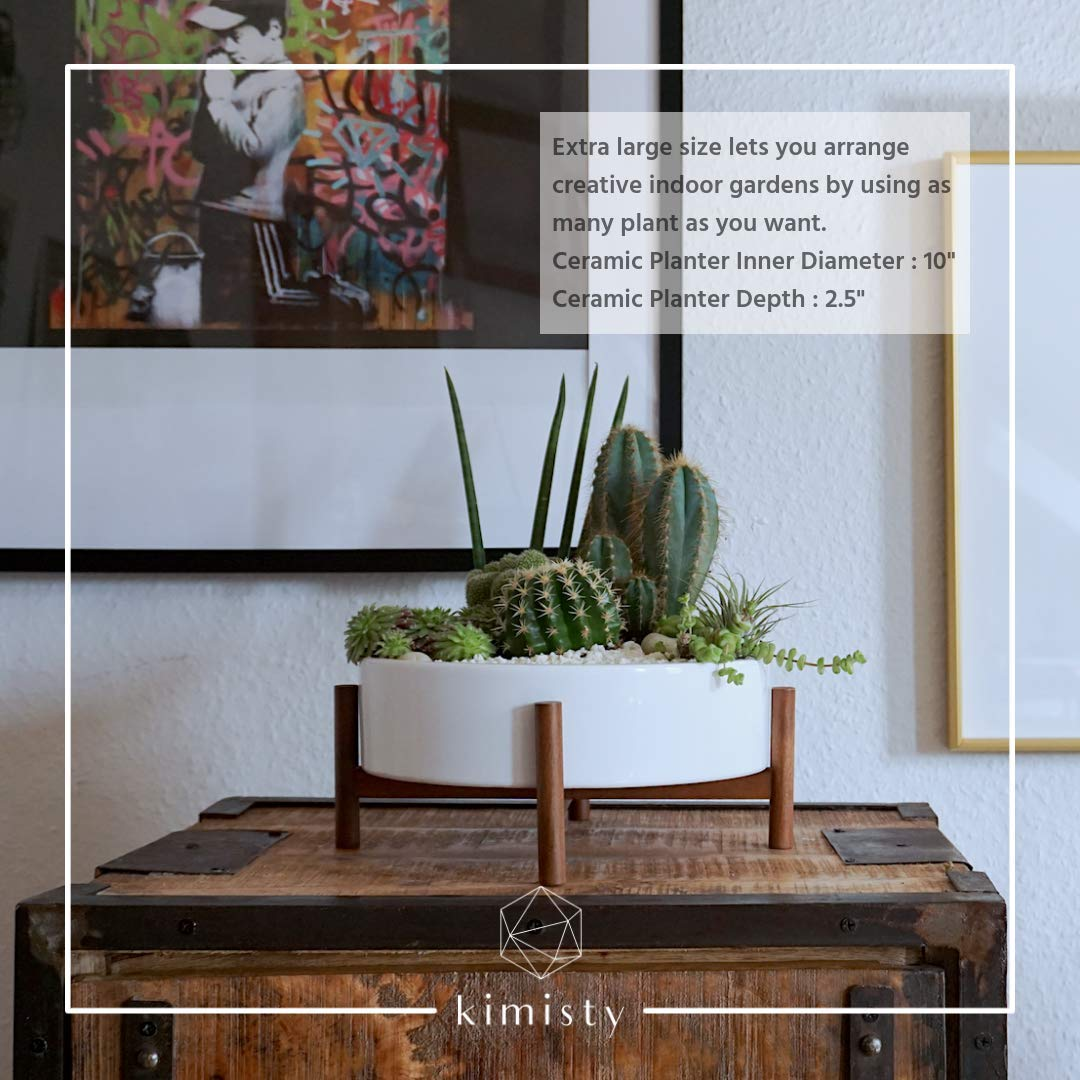 Amazon.com: Mid Century - Maceta de suculenta moderna grande ...