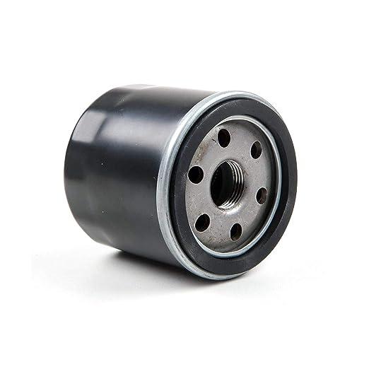CUB CADET MTD Motor de Filtro de Aceite de Motor, cortacésped ...