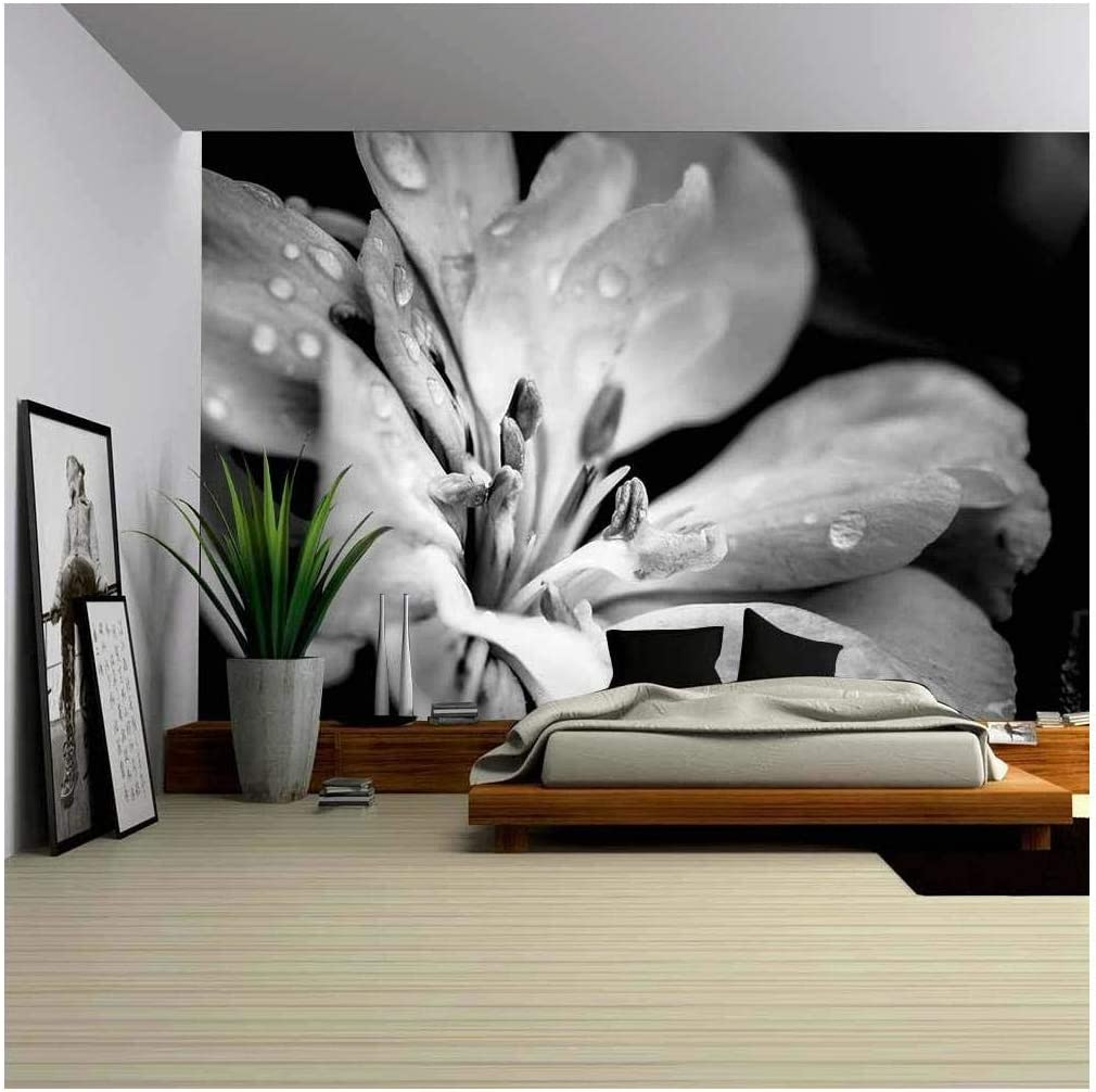 Wall26 Flower With Raindrops Canvas Art Wall Mural Decor 66 X96 Amazon Com