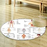Round Area Rug Complete Chart of Organ Body Structures Cell Life Medical Living Dinning Room & Bedroom Rugs-Round 24''