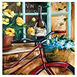 Thirstystone French Bicycle-II Occasions Coaster, Multicolor