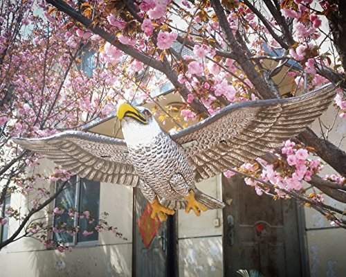 ZILIN Lifesize (110x60 cm) Big Flying Bald Eagle,Shaking in The Wind, Hawk Decoy for pest Birds and Small Animals Control ()