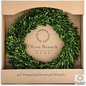 Olive Branch Home Boxwood Wreath Preserved 113