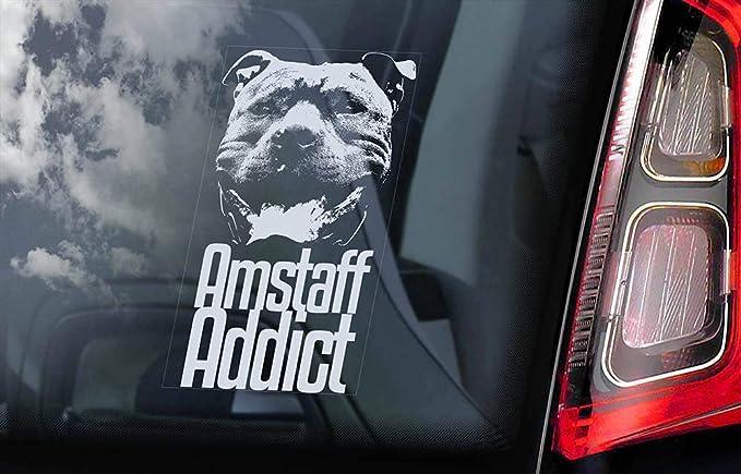 Amstaff Addict Auto Aufkleber Fenster Aufkleber Vinyl Motiv American Staffordshire Terrier Staffie Staffy Hundeschild Abziehbilder Lustiger Laptop Aufkleber Baumarkt