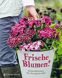 Bio-schnittblumen Aus Dem Eigenen Garten: Die Besten Anbautipps ... Schnittblumen Frische Strause Garten