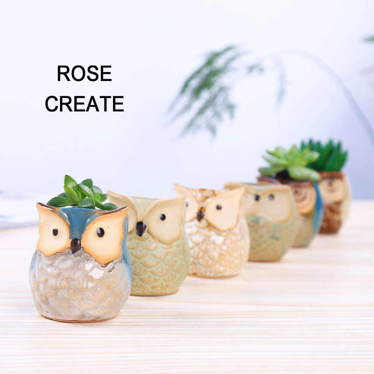 ROSE CREATE 6 Pcs 2.5 Inches Owl Pots, Little Ceramic Succulent Bonsai Pots with a Hole – Pack of 6