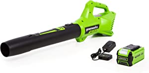 Greenworks 40V 100 MPH Air Speed Cordless Blower, 2.0 AH Battery Included 2412002