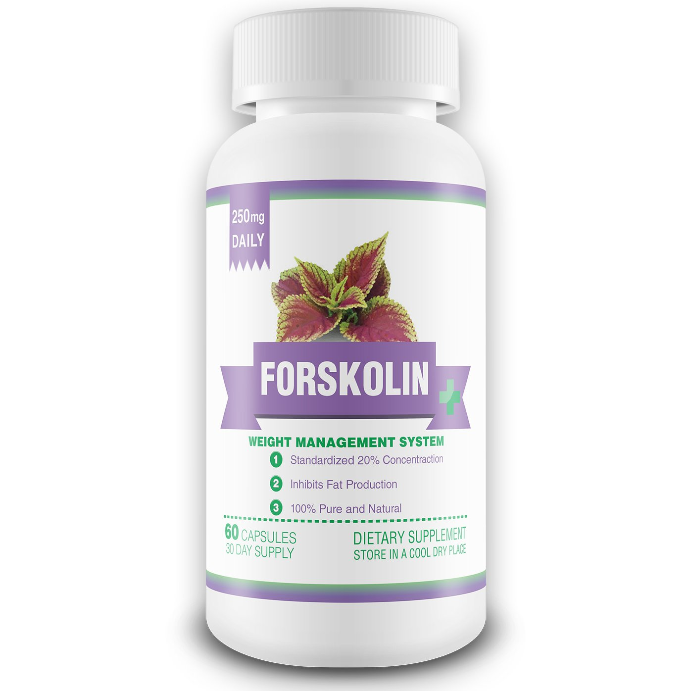 100% Pure Forskolin Extract - 1 Month Supply - 250mg Active Forskolin