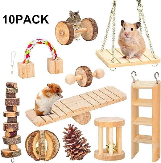LEUM SHOP - Juego de Mancuernas para Mascotas, hámster, Conejos, Ratas, Mancuernas, Dientes y Dientes: Amazon.es: Productos para mascotas