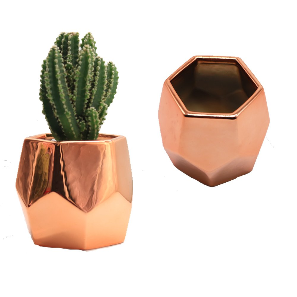 Purzest Cacti Pots,Ceramic Succulent Planter Modern Home Decor Cactus Plant Pot, 3 inch Copper Color 2 Set by Purzest