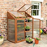 Rowlinson HWGROWST2 Hardwood Mini Greenhouse, Brown, 120x63x144 cm
