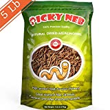PICKY NEB 100% Non-GMO Dried Mealworms 5 lb - Whole Large Meal Worms Bulk - High-Protein Treats Perfect for Your Chickens, Ducks, Wild Birds: more info