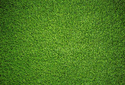 baociccoコットンポリエステルArtificial Green Grass Backdrop 7 x 5ft LawnプラスチックTurf Backgroud合成School Yard Football Playgroud Kid新生児赤ちゃん写真Potraits Artistic Studio小道具   B07FM6SH9P