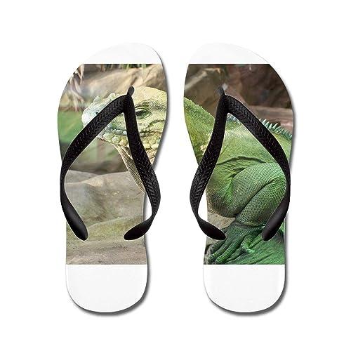 3f42814bce50 CafePress - Iguana - Flip Flops