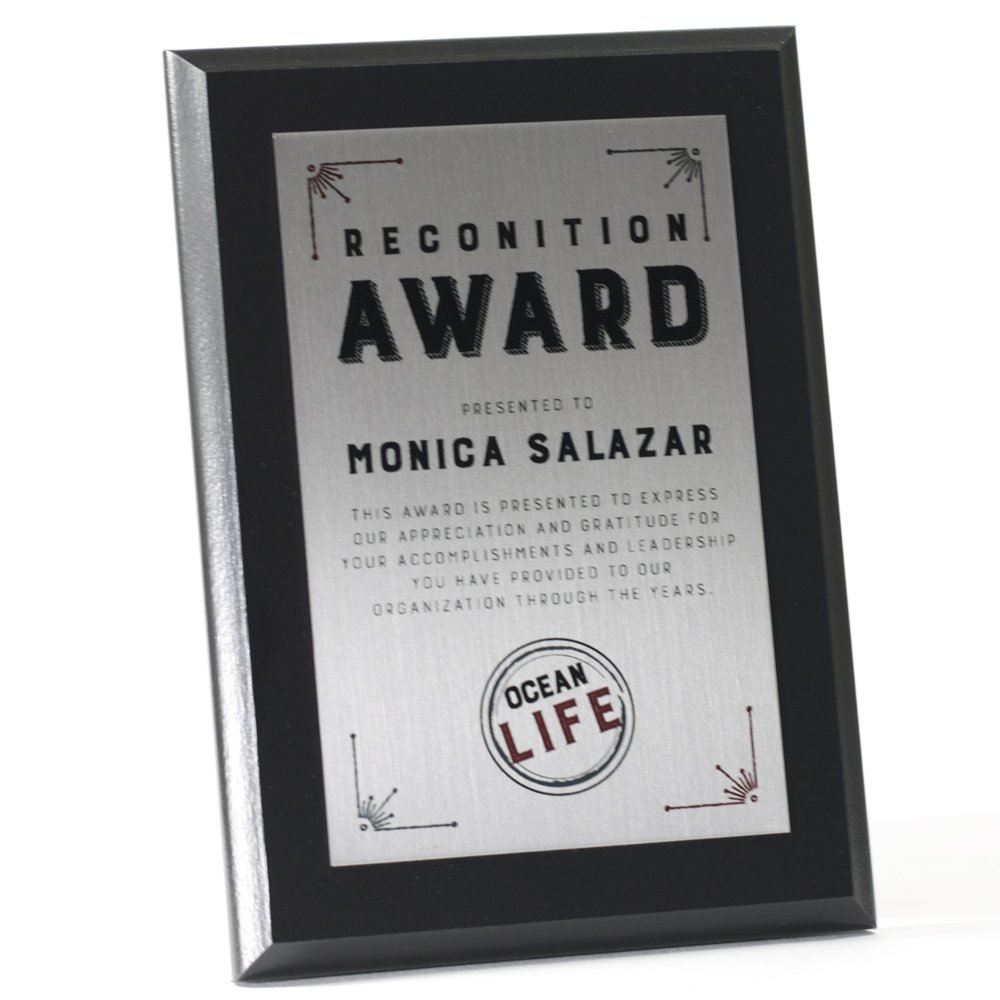 Sublimated Plaques - Color Metal Award (18'' x 24'', Silver)