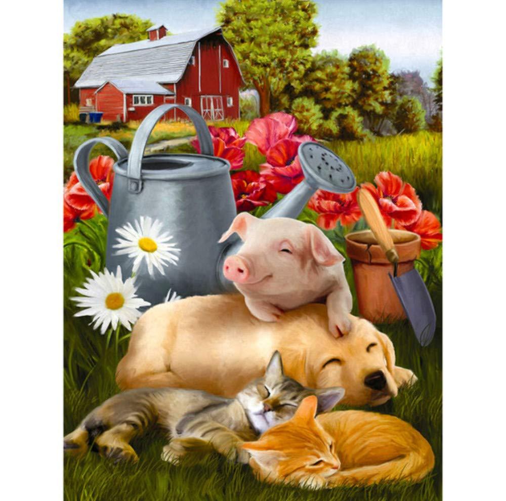 WFYY Malen Nach Zahlen Erwachsene Katze Hund Schwein Auf Auf Auf Segeltuchgeschenken Handgemalte Digitale Bilder 16X20 Inch Holzrahmen B07NW4JHYJ | Feinen Qualität  d3577b