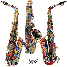 Colorful Alto Saxophone by Juleez Hand Painted Musical Instrument