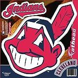 MLB Cleveland Indians Logo Teammate Fathead