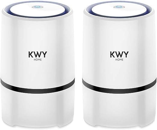 KWY Home Purificador de Aire con Auténtico Filtro HEPA Compacto ...
