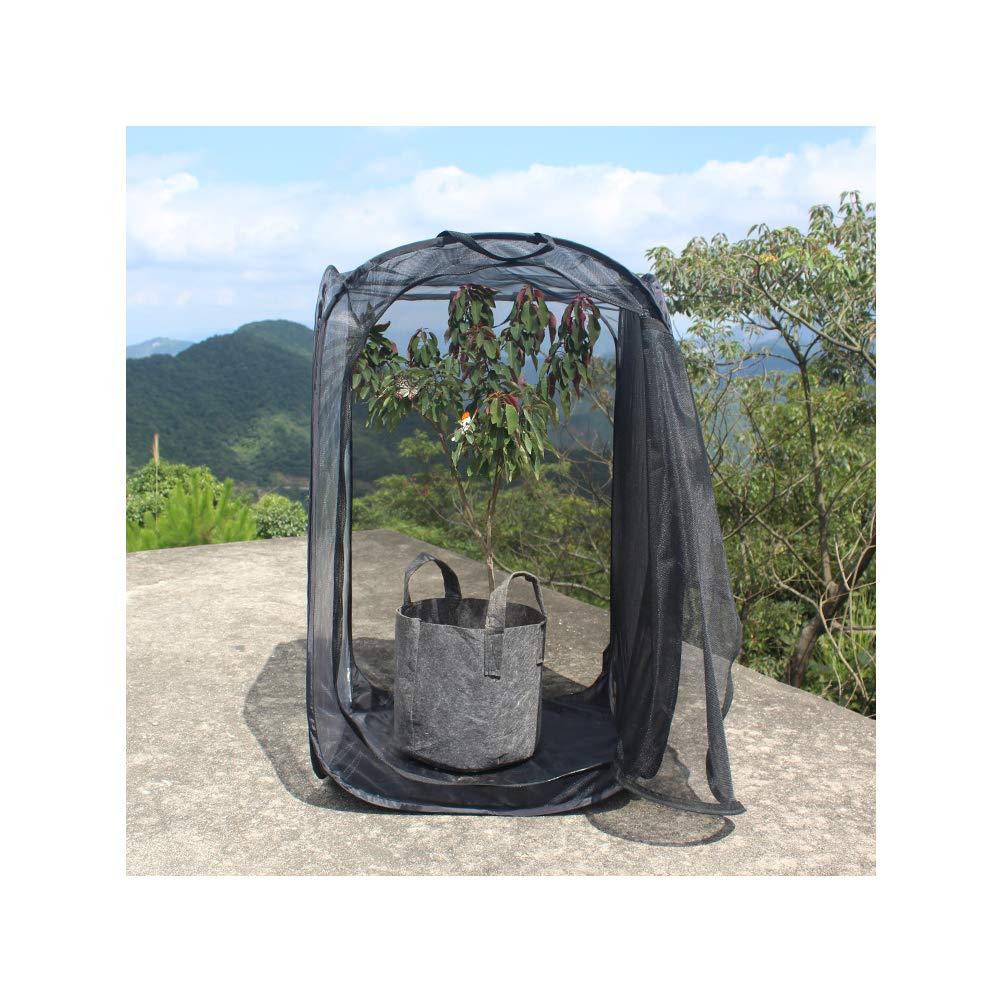 60 Sungpunet Gro/ße Monarch Butterfly Habitat zusammenklappbares Insektennetz Cage Terrarium Pop Up 60 90cm Schwarz