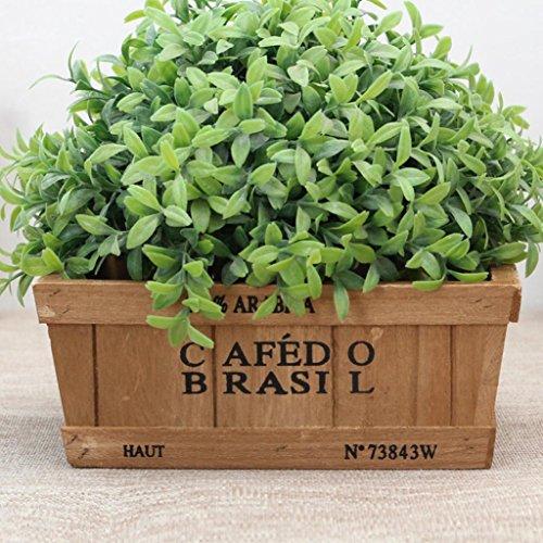 Jarsh 3 Sizes Square Wooden Planter Pot Garden Window Box Trough Planter Succulent Flower Bed Pot (A(20208cm))