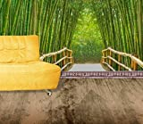 Startonight Mural Wall Art Photo Decor Bamboo Alley Large 8-feet 4-inch By 12-feet Wall Mural for Living Room or Bedroom