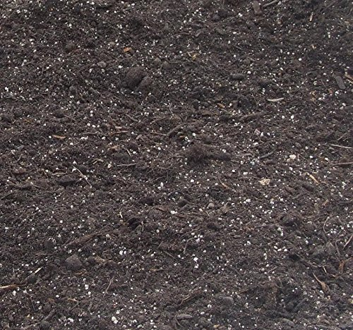 Grava leafpod multiusos de turba Compost bolsa a granel 1000 ...