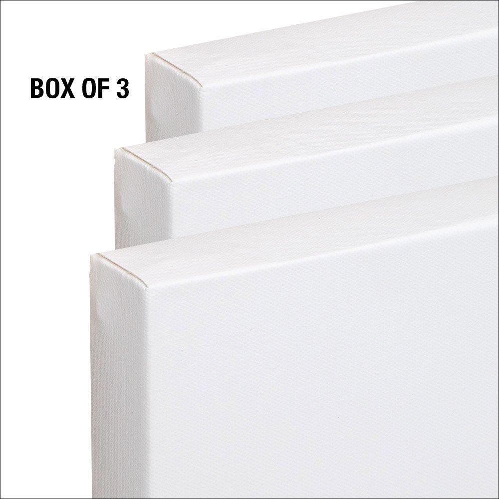 The Edge All Media Cotton Canvas 1-1//2 Box of Three 20x24