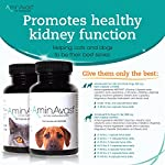 AminAvast Kidney Support Supplement for Cats and Dogs, 300mg - Promotes and Supports Natural Kidney Function - Supports Health and Vitality - Easily Administered - 60 Sprinkle Capsules 9