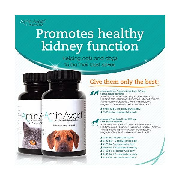 AminAvast Kidney Support Supplement for Cats and Dogs, 300mg - Promotes and Supports Natural Kidney Function - Supports Health and Vitality - Easily Administered - 60 Sprinkle Capsules 2