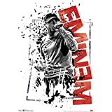 Eminem Crumble Music Poster 13 x 19in