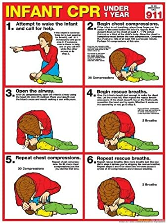 Cpr For Infants 18 X 24 Laminated Poster 2011