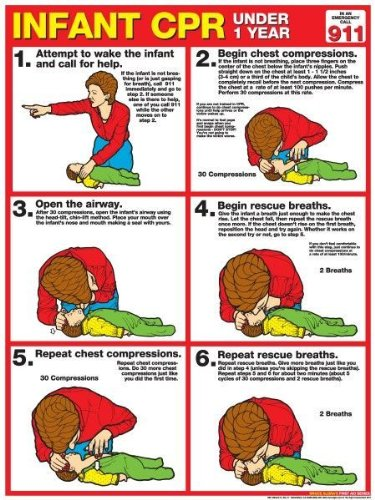 Amazoncom Cpr For Infants 18 X 24 Laminated Poster 2011