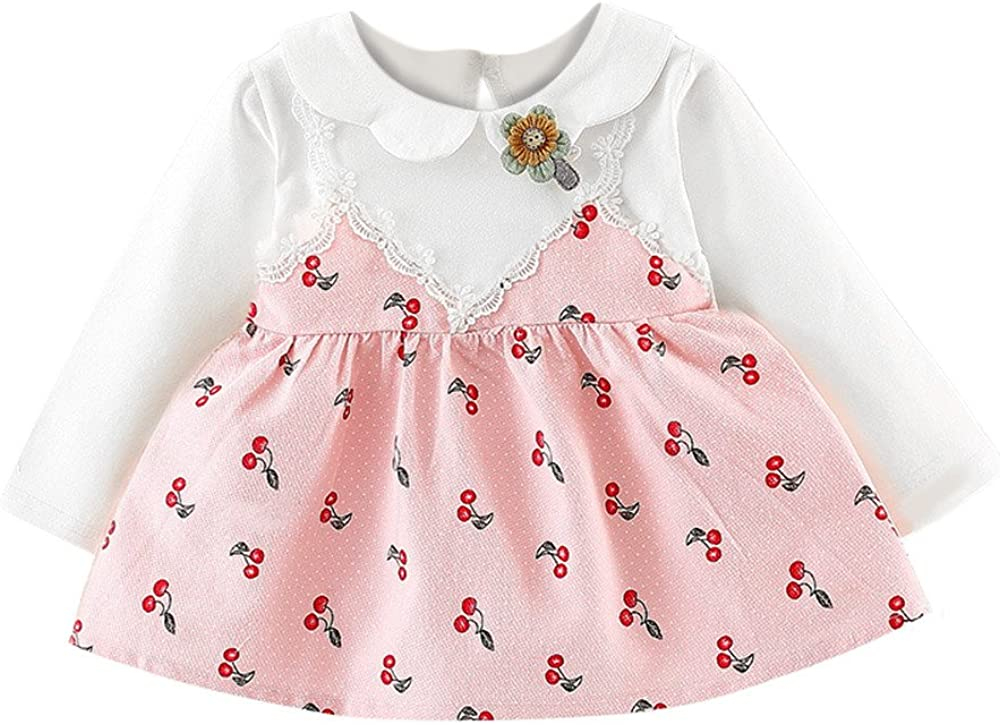 Baby Girl Flower Dresses Outfits Long Sleeve Party Clothes 0-24 Months Princess Dancing Dresses Kids Wedding Birthday Mini Dress