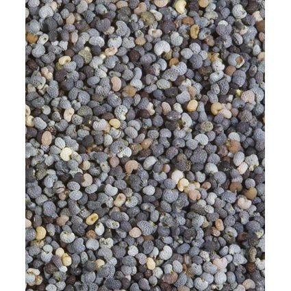 Organic Poppy Seed - 6 x 8 Oz