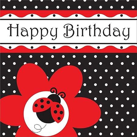 NANAS PARTY Ladybug Fancy - Globos y Decoraciones para ...