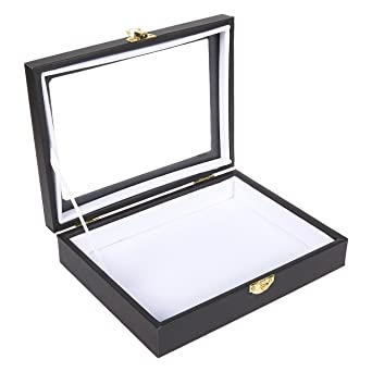 insect display case bug display box with glass window and secure