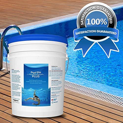 Pool Amp Spa Ph Increaser Pure Soda Ash Sodium Carbonate