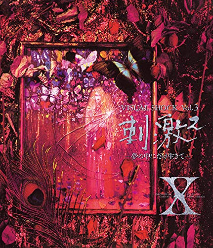 エックス / VISUAL SHOCK Vol.3 刺激2 -夢の中にだけ生きてーの商品画像