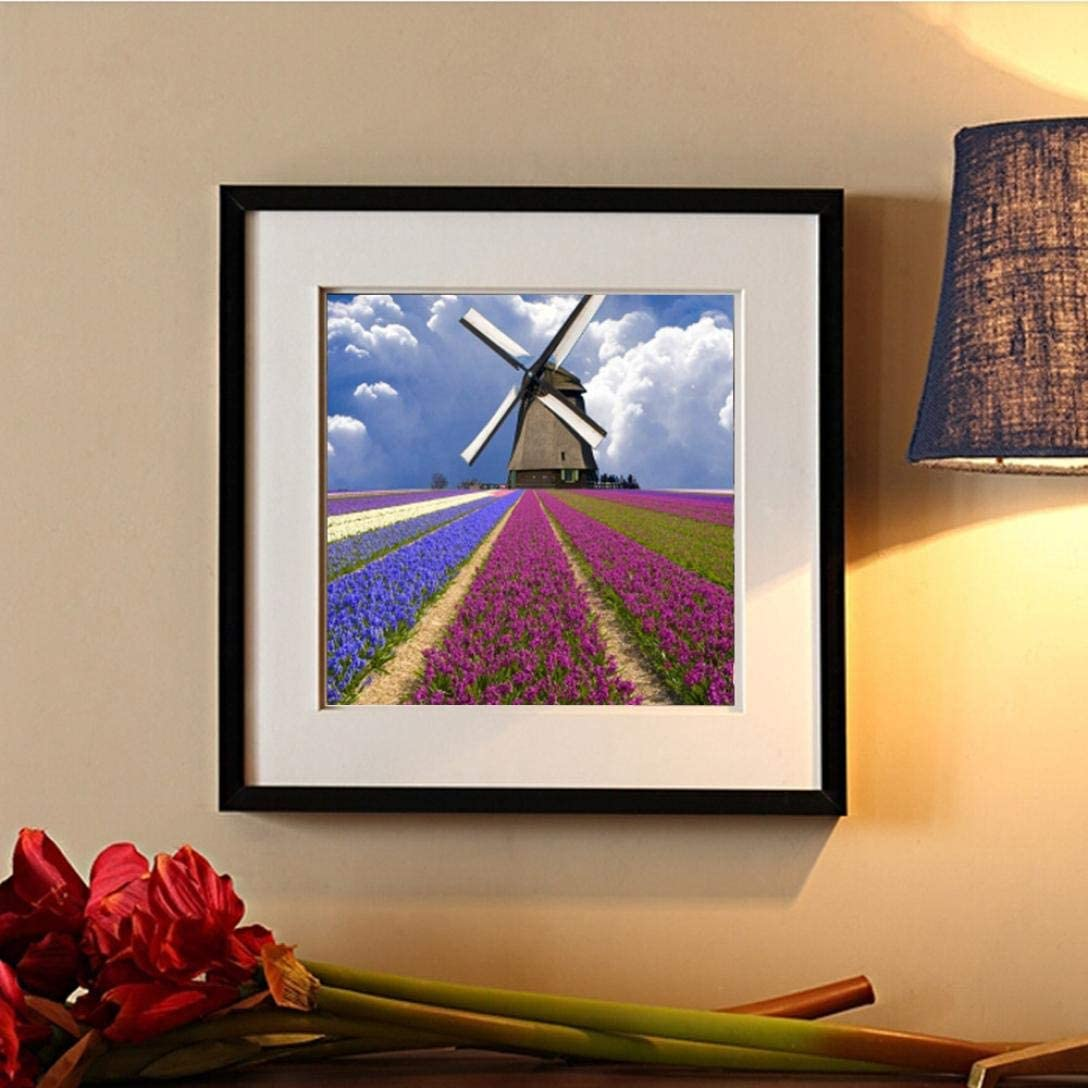 B Staron 5D Diamond Painting Kits for Adults Floral Fields Windmills Home Decor Clearance DIY Embroidery Cross Stitch Kit Crystals Pictures 5D Diamond Painting Kit Canvas Wall Art Decor