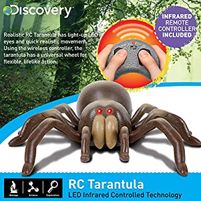 Discovery Kids RC Moving Tarantula Spider, Wireless Remote Control Toy for Kids, Great for Pranks and Halloween Decorations, Realistic Scurrying Movement, Glowing Scary Red LED Eyes: Toys & Games