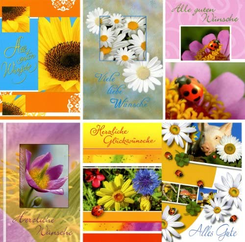 50 Grußkarten verschiedene Anlässe Glückwunschkarten Wünsche Alles Gute Blumen Klappkarten mit 50 Umschlägen 41-1990