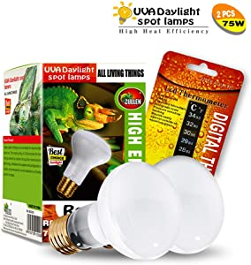 CULLEN 2-Pack Reptile Heat Lamp UVA Basking Spot Light Glass Cover Heat Lamp/Bulb/Light with Stick-on Digital Temperature Thermometer for Lizard,Tortoise Reptiles & Amphibians (uva75-2)