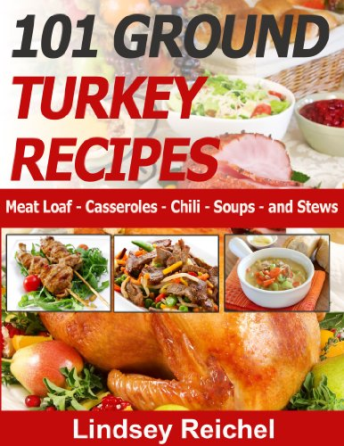 101 Ground Turkey Recipes - Meat Loaf - Casseroles - Chili - Soups - and Stews by [Reichel, Lindsey]