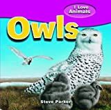 Owls, Steve Parker, 1615332359