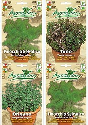 Organic Herb Seeds NON GMO Wild Fennel - Oregano - Marjoram - Thyme Best Quality.