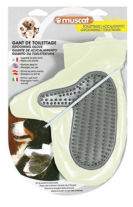 ZOLUX - Gant de toilettage pour chiens et chat